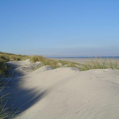 Dünen am Loog-Strand